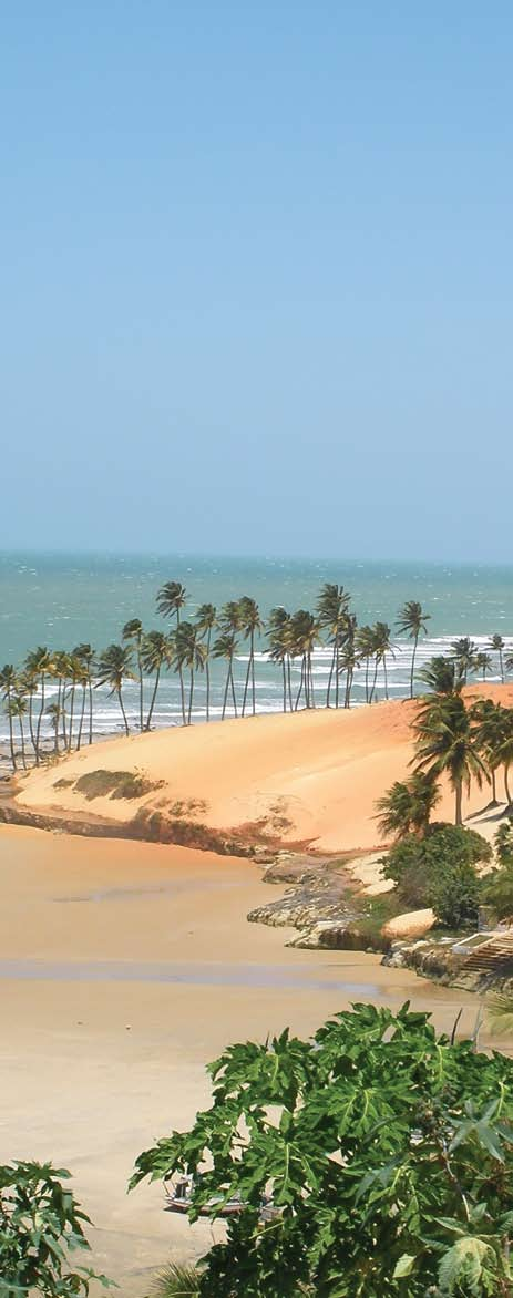 Beaches of Brazil
