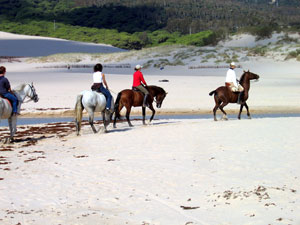 Horse riding on the beautiful white sandy beaches